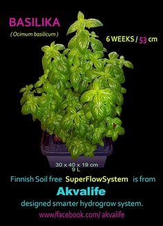 Akvalife soil free  SuperFlowSystem from Finland.