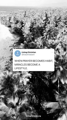 Inspirational Bible Quotes, Bible Verses Quotes, Jesus Quotes, Bible Scriptures, Faith Quotes, Bible Verses About Faith, Jesus Is Life, God Jesus, Jesus Christ