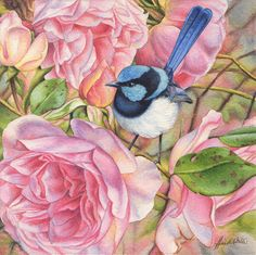 Heidi Willis - Blue Wren and Roses Miniature