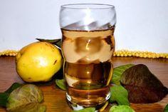 Toate părțile componente ale gutuiului se folosesc în scopuri terapeutice: frunzele, fructele, sâmburii, cotorul fructului și chiar scoarța de pe crenguțele tinere ale gutuiului. Cu un conţinut ridicat de apă (70-72%), zaharuri (6-13%), vitamine (A, B, PP) şi minerale (calciu, fier, fosfor, potasiu