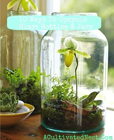 Upcycling Jars. I like this post - upcycling is a creative and earth friendly process. Check out this post: http://acultivatednest.com/2012/03/10-ways-to-upcycle-glass-bottles-jars/#