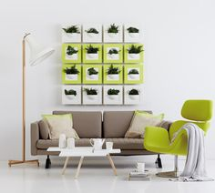 Blogissa: Huonekasvit puhdistavat ilmaa ja piristävät mieltä