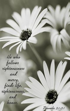 Proverbs 21:21 Love The Lord, Gods Love, Scripture Quotes, Bible Verses, Book Of Proverbs, Proverbs 21, God's Heart, Beautiful Prayers, Knowledge And Wisdom