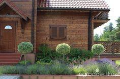 Kubusiowo II - strona 319 - Forum ogrodnicze - Ogrodowisko
