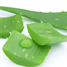 4 tips to ensure your Aloe Vera Gel is Pure. How to ensure your Aloe Vera Gel is pure. 4 Quick Tips on what to look for on in an Aloe Vera Gel. Aloe Vera Facial, Aloe Vera For Skin, Natural Remedies For Sunburn, Sunburn Remedies, Home Facial Treatments, Scar Treatment, Cucumber Juice Benefits, Black Spots On Face, Dark Spots