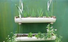 Resultado de imagem para mini horta no cano de PVC
