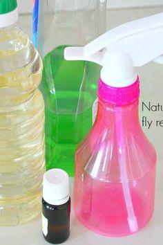Easy DIY Natural fruit fly repellents