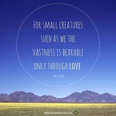 For small creatures such as we, the vastness is bearable only through love. – Carl Sagan thedailyquotes.com