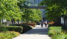 OTTO factory premises | Hamburg Architecture Awards, Landscape Architecture, Cool Office Space, Hedges, Horticulture, Shrubs, Grass, Sidewalk, Building