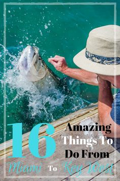 Amazing things to do