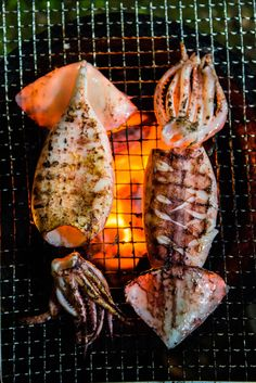 Japanese Barbecue is the name, Rugby is the game. This Saturday, England will be cooking South Africa in the FINAL 🏈 Who will be watching it? Grilled Squid, Grilled Seafood, Grilled Lobster Recipes, Shellfish Recipes, Seafood Recipes, Squid Recipes, Fire Cooking, Outdoor Cooking, Seafood Dinner