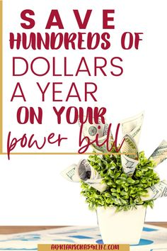 For about $20 and a little bit of your time, you could save hundreds of dollars a year on your power bill. Lots of easy ways to save on your power bill if you're smart about it. Best Money Saving Tips, Saving Money, Debt Snowball Spreadsheet, Green Initiatives, Little Bit Of You, Power Bill, Show Me The Money, Money Savers