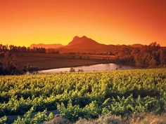 Beautiful pic of Paarl. About 50 km from Cape Town, Paarl is situated beneath a large granite outcrop formed by three rounded domes, the prominent one named Paarl (which means pearl) rock. Zimbabwe, South Africa Tours, Wine Safari, Africa Travel, Cape Town, Places To See, Photos, Wineries, Sunset