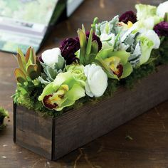 white and eggplant ranunculus, chartreuse cabbage roses, Star of Bethlehem, cymbidium orchids and dusty miller is arranged in a dark stained...
