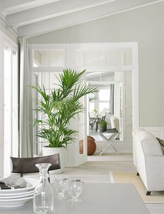 White room with green plant Scandinavian Interior, Home Interior, Modern Interior, Interior Design, One Room Cabins, Newport House, White Rooms, Garden Styles, Decoration