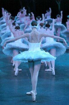 Swan Lake #dance #ballet                                                                                                                                                                                 More