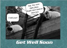 This is a real card (not an e-card) shared from Sendcere.  Feel free to share it to a friend who is sick and needs a laugh.