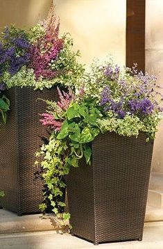 Beautiful purple and pink mixed flowers in tall planters! Front Door Planters, Tall Planters, Square Planters, Outdoor Planters, Garden Planters, Outdoor Gardens, Outdoor Decor, Wicker Planter, Wicker Baskets