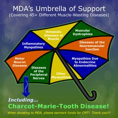 CMT is covered under MDA's umbrella of support because it's a muscle-wasting disease.