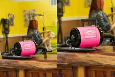 Dryers 146240: Metro Vac Air Force Commander Color Pink Aftd-3K 2 Speed Dog Pet Grooming Dryer -> BUY IT NOW ONLY: $169.99 on eBay!