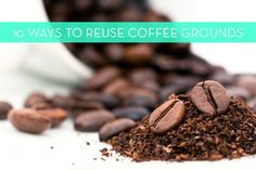 coffee for bug and cat repellant 15 Ways to Reuse Coffee Grounds at Home