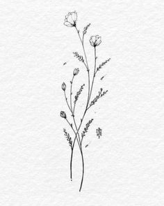 Touch - tattoo ideas - # touch Tattoo - tattoo style diy tattoo images - t Floral Tattoo Design, Flower Tattoo Designs, Tattoo Designs For Women, Tattoos For Women, Small Flower Tattoos, Tattoo Floral, Tattoo Ideas Flower, Small Tattoos For Men, Flower Outline Tattoo