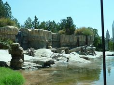 San Diego zoo San Diego Zoo, Mount Rushmore, Mountains, Nature, Travel, Museums, Animals, Parks, Naturaleza