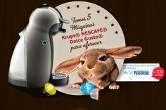 Diário de uma desempregada: Maquina cafe Krups- DolceGusto