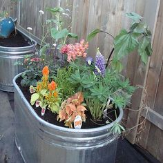 galvanized water troughs for raised bed veggie gardens