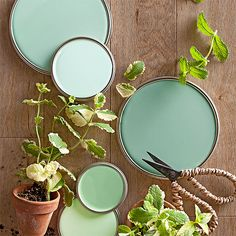 "On-trend, but completely livable, take a cue from these mint green paint colors to soothe any room. ""Mint greens are happy colors that work in a lot of different climates,"" designer Paige Sumblin Schnell says, as long as the room gets plenty of bright daylight. She favors shades of mint with more blue in them. To find the right shade, she fans out paint chips and goes with a mint that neighbors violet, rather than peach."