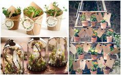 plantas y suculentas en macetas y flores en frasco en miniatura Grandpa Birthday, Wedding Giveaways, Ideas Para, Party Time, The Balm, Candles, Table Decorations, Diy, Bath Bombs
