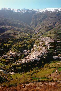 Trevelez, een van de hoogstgelegen dorpen in Europa. http://www.naturescanner.nl/europa/spanje/andalusie/alpujarras