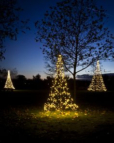Kerstverlichting Buiten - Fairybell Buitenverlichting in de Grond 3D in de Vorm van een Kerstboom met Led Lampjes - MEER Kerstboomverlichting... (Foto Fairybell Verlichting  op DroomHome.nl)