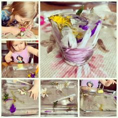 Freeze flowers in small cup of water, and let your children try to get the flowers out by melting the ice. We use warm water with sponges, eye droppers, small watering cans, and tweezers. Small Watering Can, Eye Dropper, Sensory Experience, Watering Cans, Freeze, Your Child, Preschool, Ice, Warm