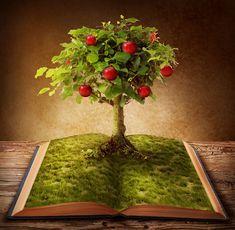 biblioteka-natury-drzewa-edenu.jpg