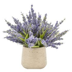 You'll love the Heather Centerpiece in Rustic Pot at Wayfair - Great Deals on all Décor & Pillows products with Free Shipping on most stuff, even the big stuff.