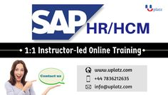 The main objective of the SAP Human Resources (SAP HR / HCM) module is to process the employee data of the organizations according to their business necessities. It is integrated with other SAP modules and peripheral systems.The Human Resource module uses a structure of data grouped together called info types.The Personnel Administration (PA) sub module helps the professionals to track the employee master data, work schedules and salary information.