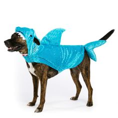 Top Paw Pet Halloween Shark Costume