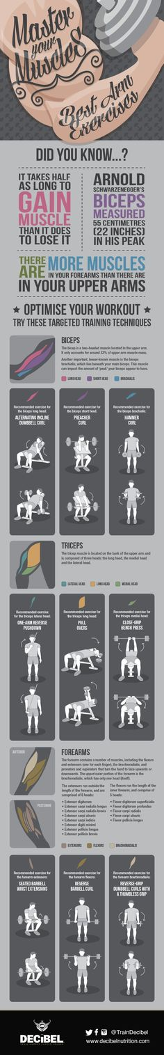 Master Your Muscles: Best Arm Exercises