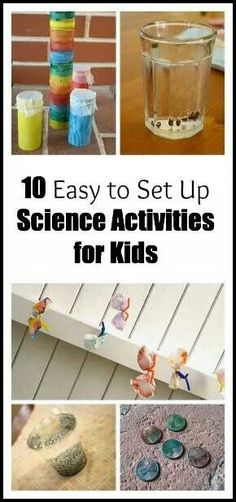Science Experiments - Winner!