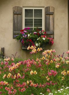 29 Awesome Garden Shed repurposed ideas for your backyard outdoor space Cottage Garden Designs Design No. Window Box Plants, Window Box Flowers, Window Boxes, Flower Boxes, Window Shutters, Wood Shutters, Cottage Windows, Garden Windows, Ventana Windows