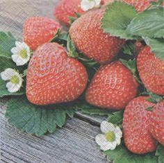 Fruits :Serviette papier fraises et fleurs 33 cm X 33 cm 3 plis http://fournitures-loisirs.les-creatifs.com/serviettes.php?refer=Fraises-et-fleurs pour la décoration de table.