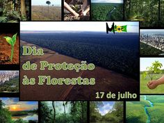 ALEGRIA DE VIVER E AMAR O QUE É BOM!!: DIÁRIO ESPIRITUAL #166 - 17/07 - Atitude Correta