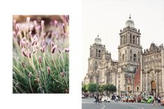 Mexico City | Ashley Dang Photography