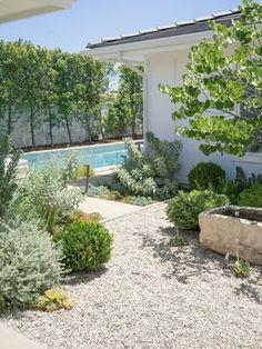 Backyard Retreat, Backyard Patio, Desert Backyard, Outdoor Rooms, Outdoor Gardens, Landscape Design, Garden Design, California Backyard, Garden In The Woods