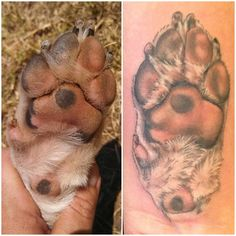 Dog paw tattoo