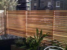 Southgate Timber is a supplier of Hardwood decking, cedar cladding, oak mouldings, owatrol treatment & many more. Modern Fence Panels, Slatted Fence Panels, Timber Screens, Timber Fencing, Contemporary Fencing, Fence Prices, Cedar Cladding, Hardwood Decking, Fence Screening