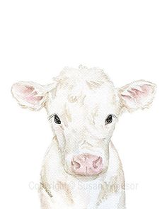 """Cow Calf Watercolor Print White Farm Animal. Baby Cow watercolor giclée reproduction.Portrait/vertical orientation. See """"options"""" tab for size variety available. Printed on fine art paper using archival pigment inks. This quality printing allows over 100 years of vivid color in a typical home display. Print is sent in cellophane sleeve with cardboard in a sturdy mailer to protect it while shipping. Orders ship within 1-3 business days. Thank you for looking! ~Susan :) © Susan Windsor This..."""