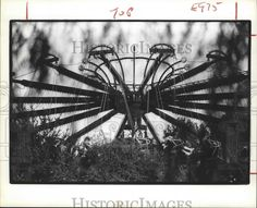 This is an original press photo. This fast moving ride at Astroworld, Houston, Texas, provides a little more excitement than an afternoon swing in the park. The flying chair ride surrounded by foliage creates a striking geometric design.   eBay!