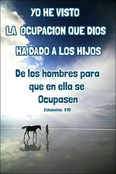 ARACELI MALPICA- Posters : ECLESIASTÉS, 3:10 Yo he visto la ocupación que Dios ha dado a los hijos de los hombres para que en ella se ocupasen.